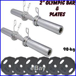 2 Olympic Dumbbell Barbell Bars Iron Cast Disc Plates Weightlifting Training
