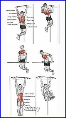 Pull Up Bar And Dips Station